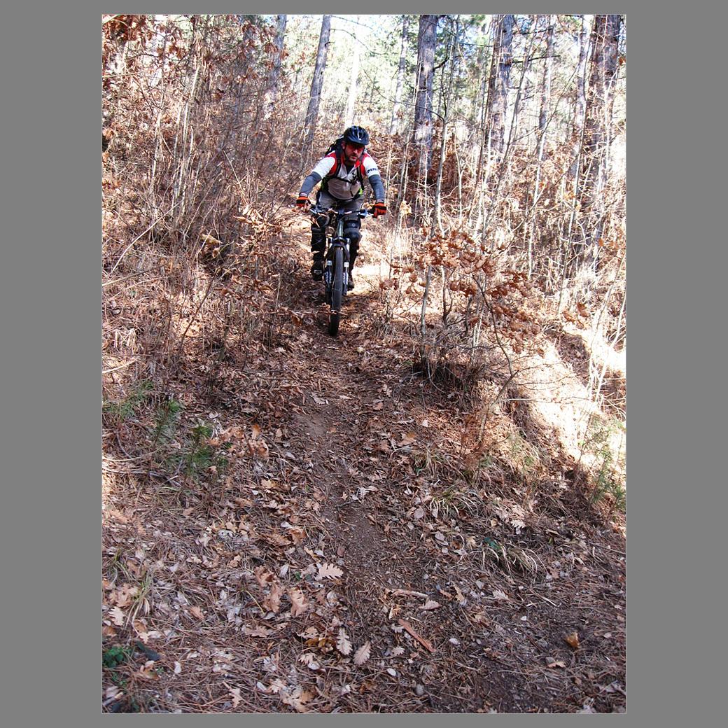 Вие разглеждате снимки от статията: Батулия - гъбарската пътека под връх Лаловица