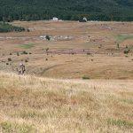 Uzana 2009