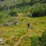Рила, пътеката през Йончевото езеро